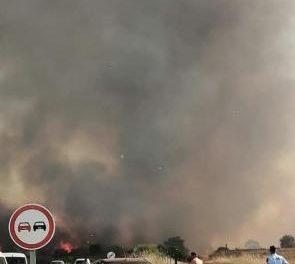 """Un incendio """"de gran magnitud"""" se propaga a Zarza la Mayor desde la zona fronteriza con Portugal"""