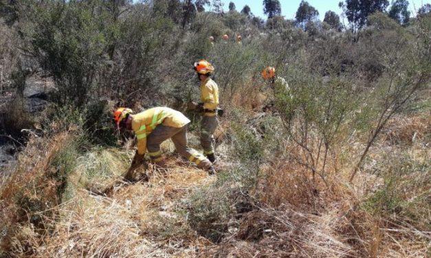 El Infoex calcula que el incendio trasfronterizo ha arrasado más de 150 hectáreas españolas