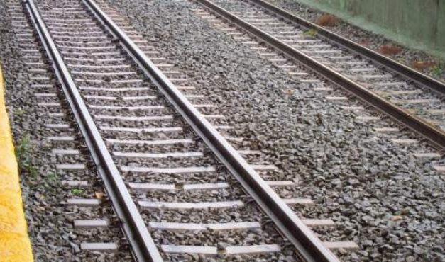 Vara traslada el compromiso del Gobierno de poner en servicio el tramo ferroviario Plasencia-Badajoz en 2021