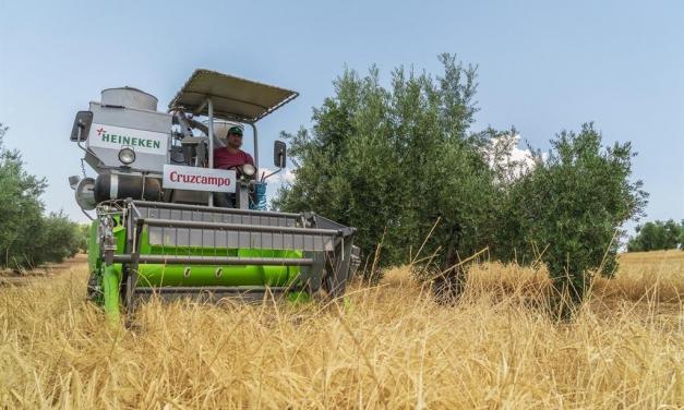 La Junta apunta que la formación agraria es importante para combatir la despoblación