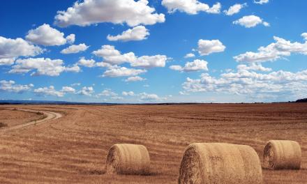 APAG Extremadura anuncia movilizaciones en pleno verano para exigir mejores precios para el campo
