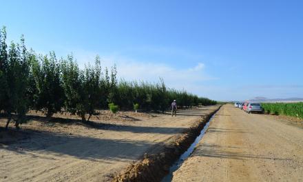 Primeros pasos para estudiar la viabilidad de la transformación en regadío de Arroyo del Campo y Los Quintos