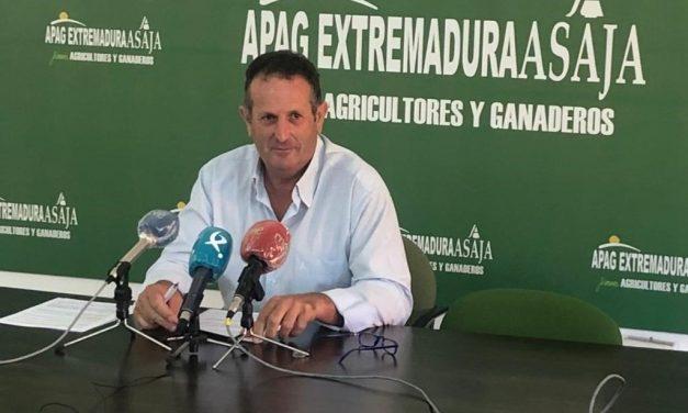 Organizaciones agrarias piden la dimisión del ministro de Agricultura ante el fallo del cava
