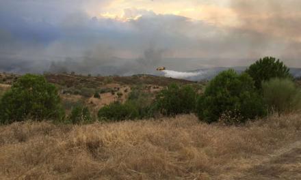 Unidas Podemos asegura que las casetas de vigilancia de Monfragüe están cerradas a pesar del alto riesgo de incendio