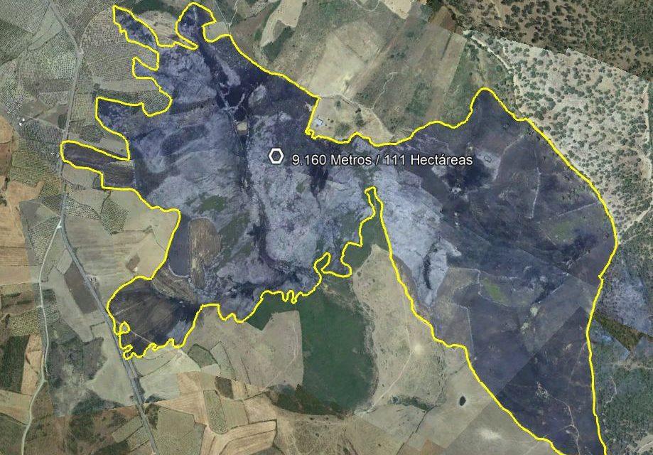 Miembros del Infoex estabilizan un incendio en Guijo de Galisteo que ha arrasado con 111 hectáreas