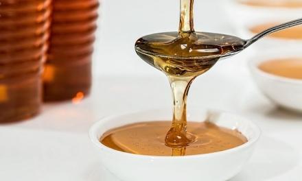 Coria organiza experiencias apícolas durante la época estival para conocer el mundo de la miel