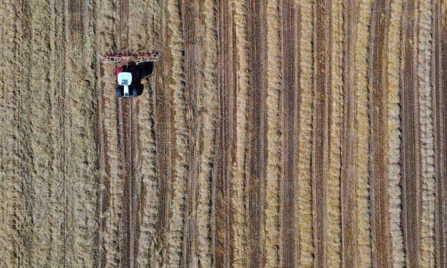 La Junta envía 152 propuestas de resolución para la creación de empresas por jóvenes agricultores