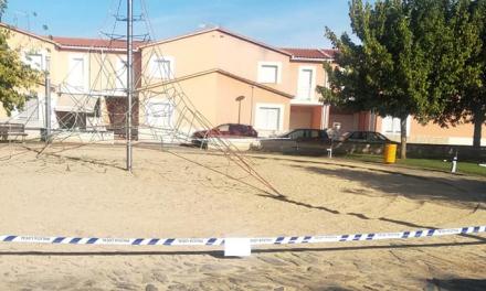 Una plaga de avispas terreras obliga a cerrar un parque de Moraleja