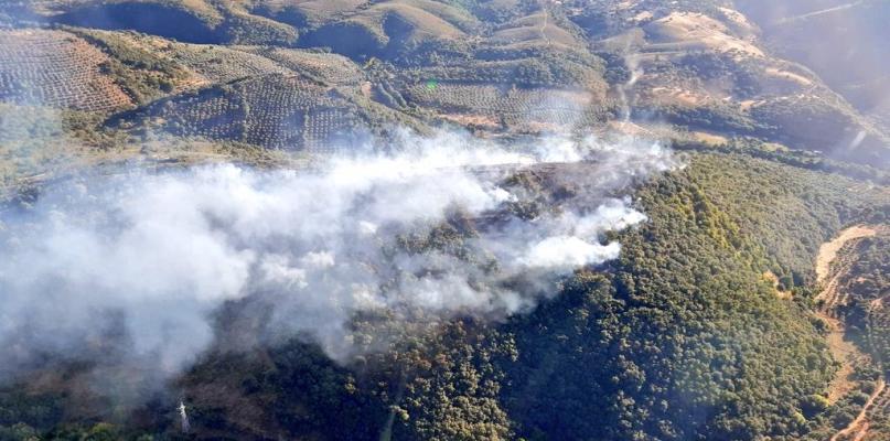 Estabilizado el incendio forestal que ha afectado a monte bajo y olivar en la comarca de Los Ibores