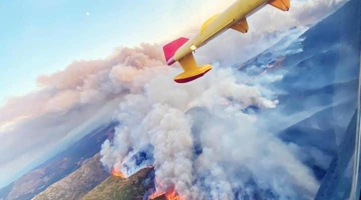 Las pérdidas económicas por los incendios del Jerte y la Vera superan los 5,8 millones de euros