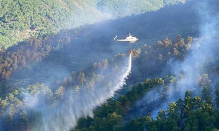 El Infoex ha intervenido en 14 incendios forestales en la última semana