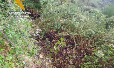 La Guardia Civil rescata en el Valle del Ambroz a dos senderistas desorientados de Bilbao
