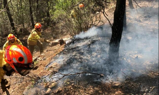 El incendio de Plasencia arrasa más de 560 hectáreas y el de Cañaveral afecta a 86