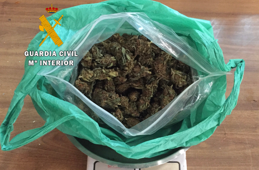 Detenido un vecino de Talayuela que transportaba 171 gramos de cogollos de marihuana