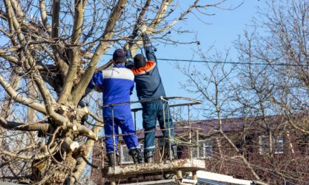 El Ayuntamiento de Moraleja oferta ocho puestos de peón de servicios múltiples