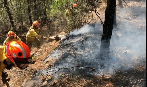 Extremadura cierra la semana con 600 hectáreas de matorral y pasto calcinadas