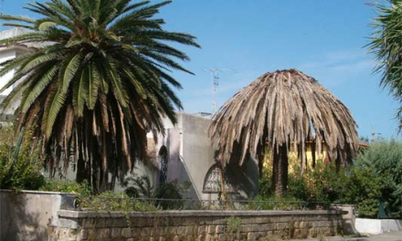 Don Benito tratará el picudo rojo de las palmeras del bulevar de la avenida del Pilar