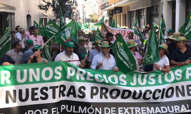 Representantes de los agricultores extremeños protestarán en Mérida por los bajos precios