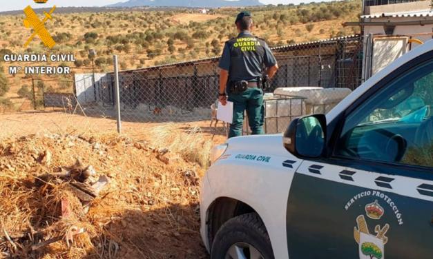 Fedexcaza se personará en el caso de la muerte de 25 perros de la rehala de Puebla de la Reina