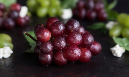 """APAG Asaja denuncia el """"precio ruinoso"""" que se está pagando por la uva de cava"""
