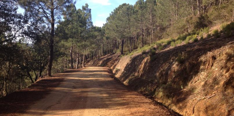 La Junta concluye el acondicionamiento del camino rural de Ruecas en Don Benito