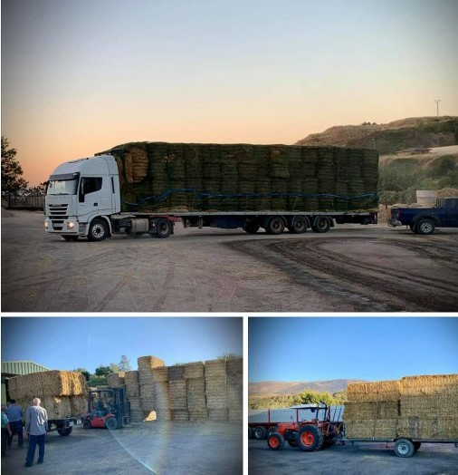 Pueblos cacereños donan alimento para el ganado de las zonas afectadas por los incendios