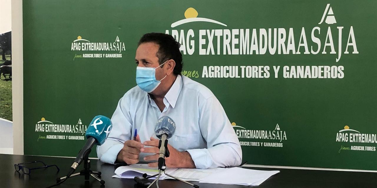 APAG Extremadura urge a la Junta a abonar inmediatamente el anticipo de la PAC