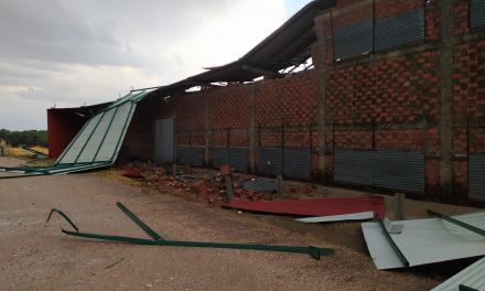 Un fuerte temporal en el norte de Cáceres arrasa cultivos, secaderos y tendidos eléctricos