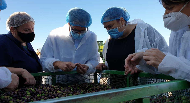 Acenorca recibe más de un millón de euros en incentivos de la Junta