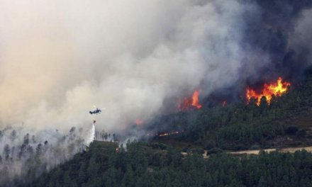 La campaña de peligro alto en Extremadura acaba con casi 7.800 hectáreas quemadas