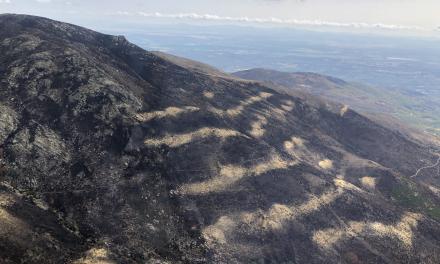La Junta prohíbe cazar en los terrenos forestales afectados por el incendio en el Jerte y La Vera