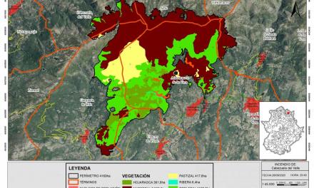 La Junta reconoce que la superficie calcinada por los incedios de La Vera y El Jerte supera las 4.160 hectáreas