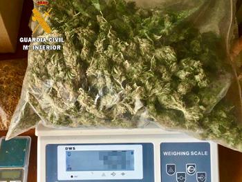 Detenido un vecino de Tiétar por tener más de 22 kilogramos de marihuana en su domicilio