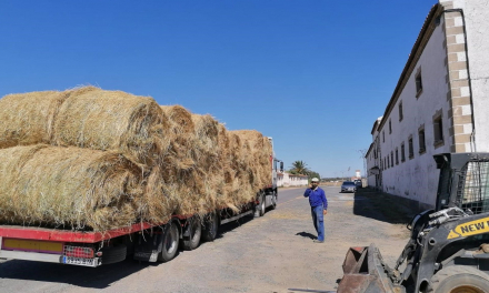 La Diputación de Cáceres entrega pacas de heno a ganaderos afectados por el incendio de La Vera