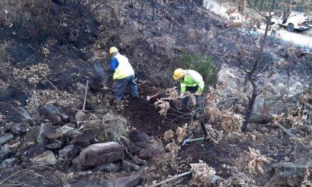 La Junta acomete labores de corrección hidrológica forestal en Garganta la Olla