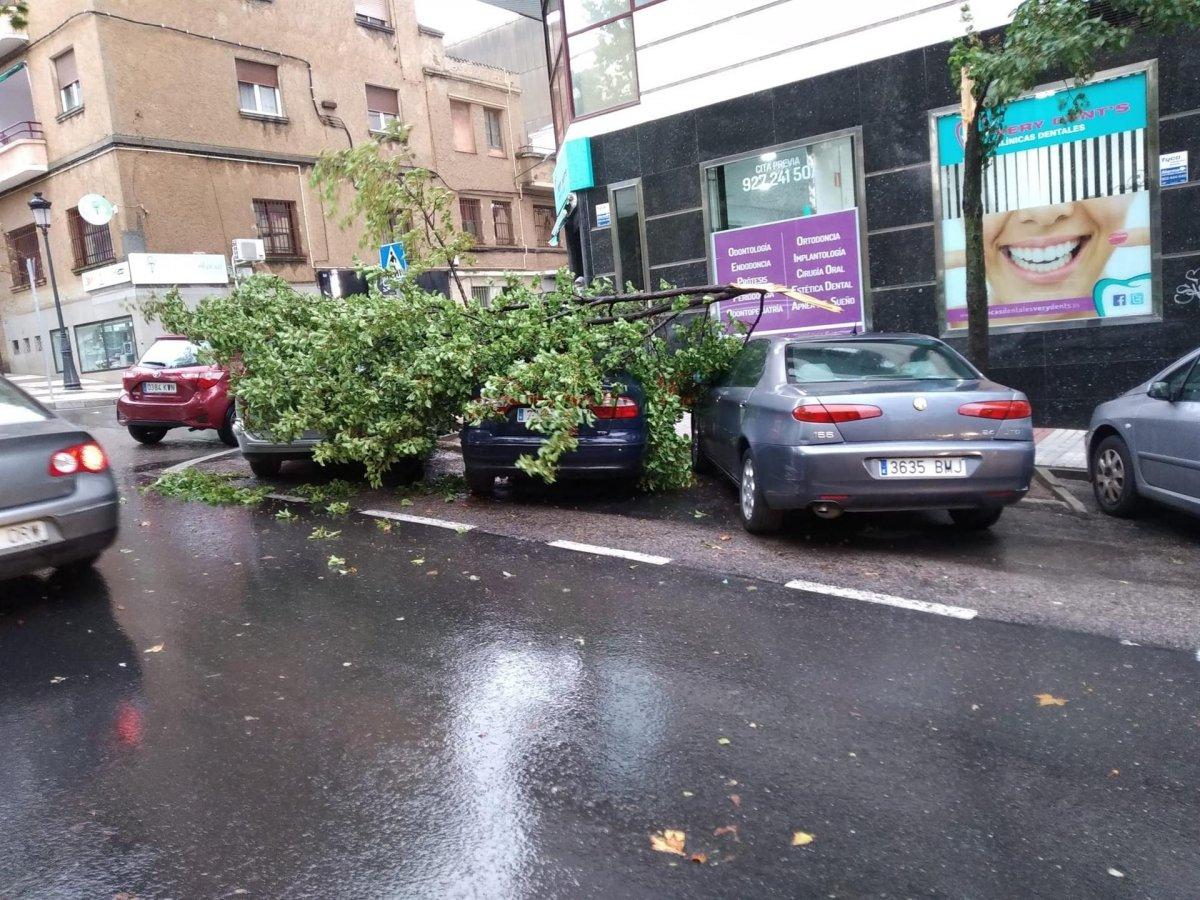 El temporal ha provocado caídas de ramas y daños en vehículos en Cáceres