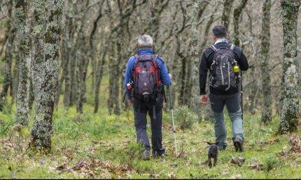 El sector turístico de Sierra de Gata ve como un varapalo las medidas restrictivas