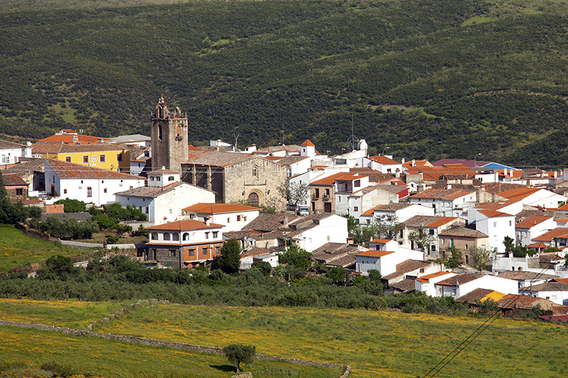 El área de Cáceres suma 47 contagios más por Covid y la muerte de una mujer de Cañaveral