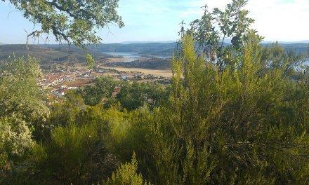 Mejorarán montes en Pinofranqueado, Alía, Don Benito, Oliva, Villar del Pedroso y Zalamea