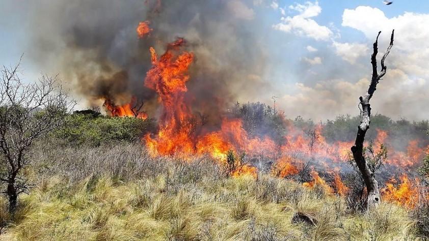 El Ejecutivo aprueba trabajos para prevenir los incendios en la provincia pacense