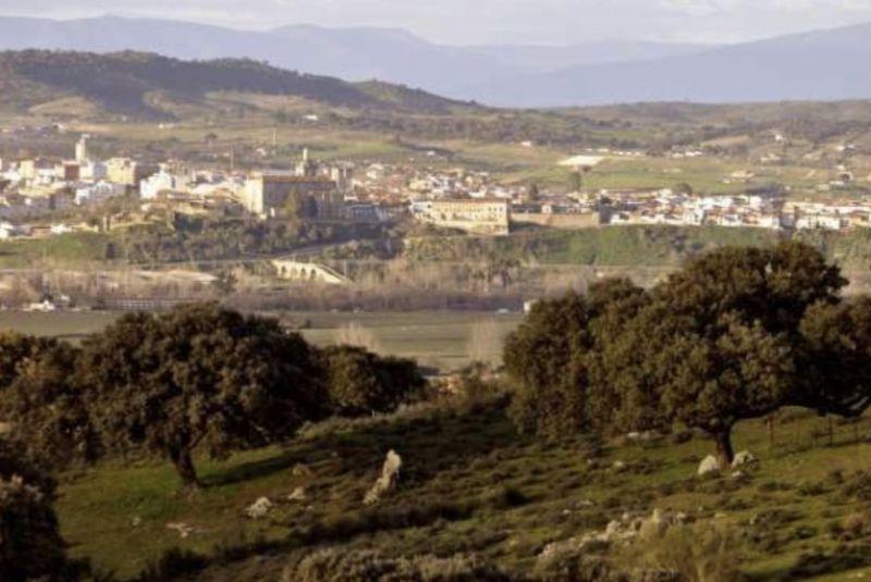 El Ayuntamiento de Coria plantará más de 1.100 plantas en la Dehesa de Mínguez