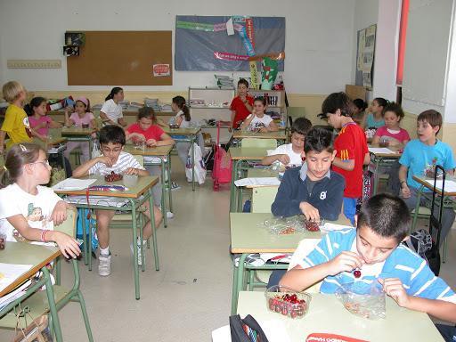 La Junta seguirá repartiendo frutas y hortalizas entre los escolares
