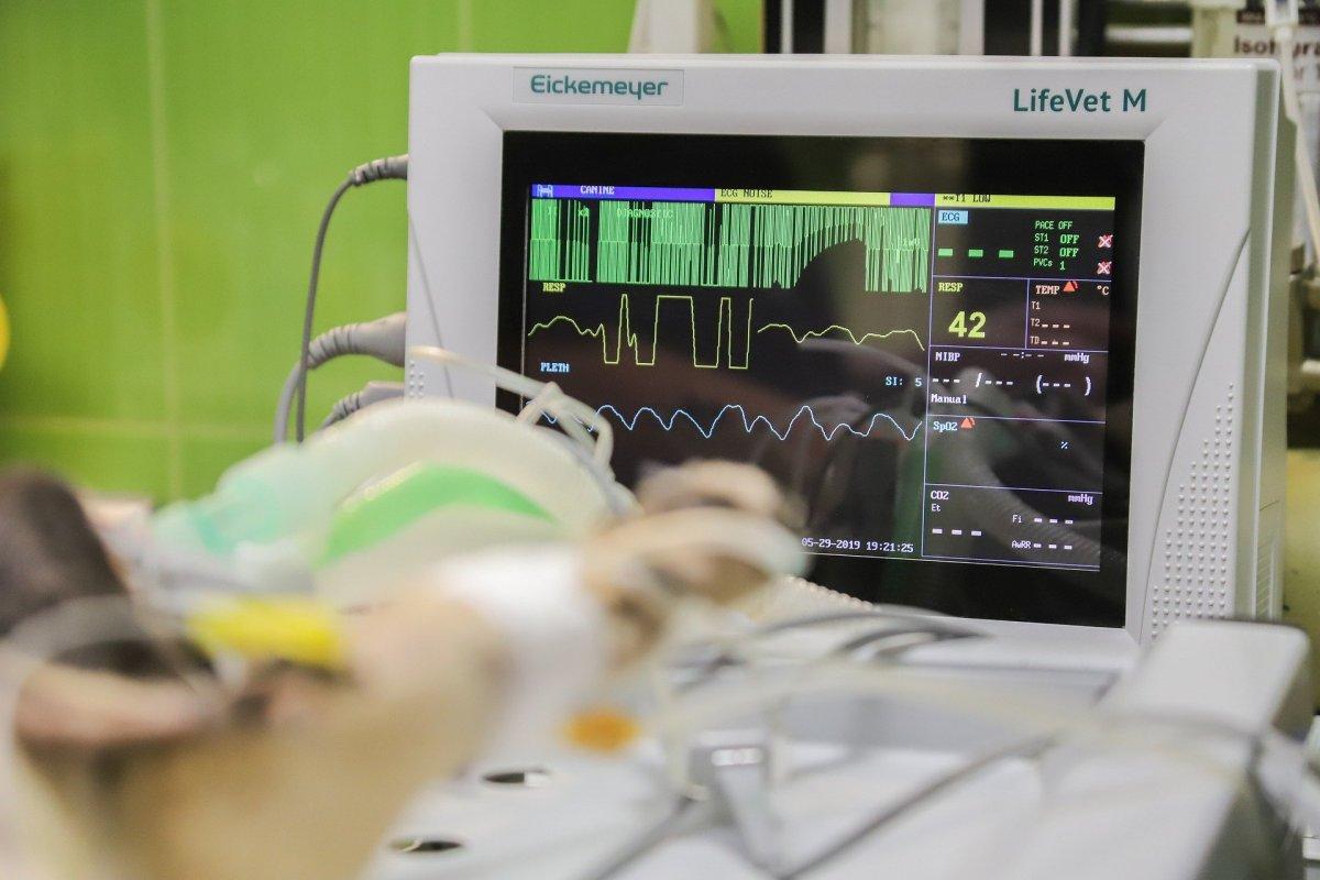 Fallecen dos personas por coronavirus en el área de Llerena-Zafra