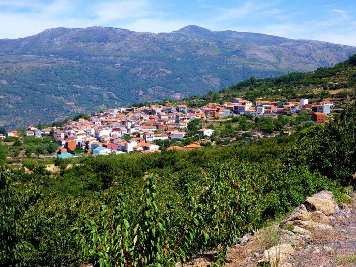 Plasencia registra 33 casos en pueblos como Cabrero, Montehermoso, Hervás y Pinofranqueado