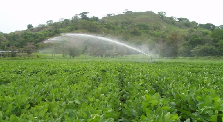 Los profesionales del campo ya pueden beneficiarse de ayudas para modernizar los sistemas de riego