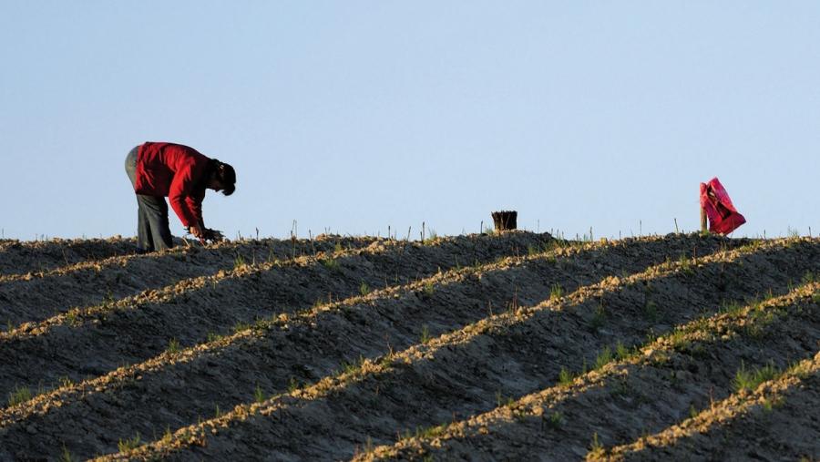 Extremadura registra el mayor descenso del paro desde 1996 con 5.544 desempleados menos