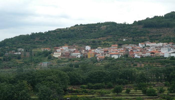 El área de Plasencia tiene 18 hospitalizados y un brote mixto en el pueblo de Cabrero