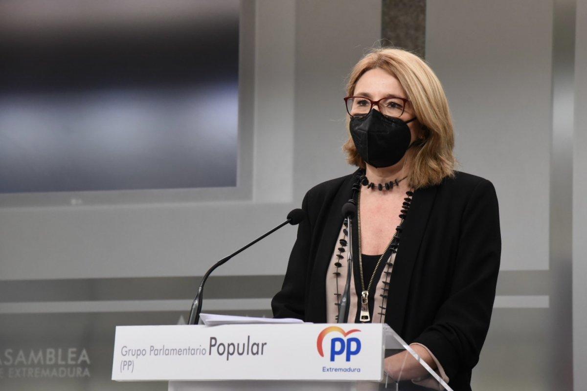 """El PP asegura que el  """"inexistente refuerzo"""" de personal está lastrando la atención hospitalaria"""