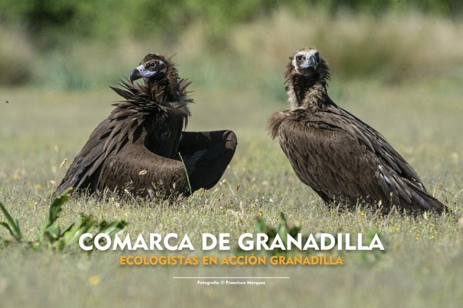Ecologistas de Tierras de Granadilla estudia el impacto de despoblación en Cerezo