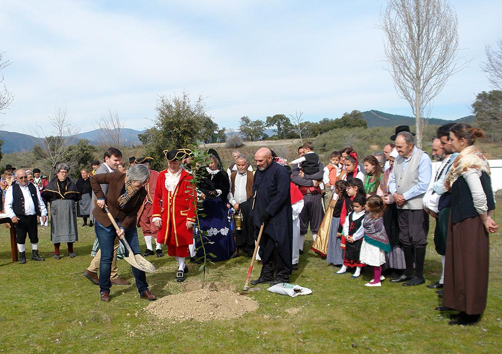La Fiesta del Árbol de Villanueva de la Sierra: la celebración ecológica más antigua del mundo